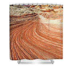 The Brilliance Of Nature 3 Shower Curtain by Bob Christopher