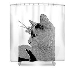 The Cat Shower Curtain by Ben and Raisa Gertsberg