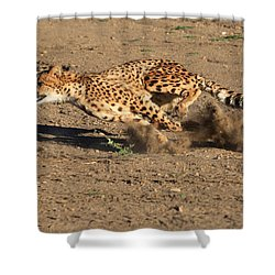 The Chase Shower Curtain by Donna Kennedy