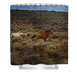 The Chase Is On D1215 Shower Curtain by Wes and Dotty Weber