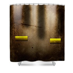 The City Shower Curtain by Peter Tellone