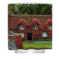 The Cottage Shower Curtain by Adrian Evans