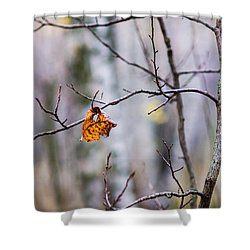 The Essence Of Autumn - Featured 3 Shower Curtain by Alexander Senin