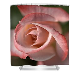 The Eye Of The Rose Shower Curtain by Joy Watson