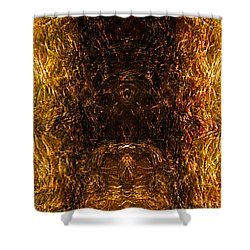 The Forbidden Door Shower Curtain by James Barnes