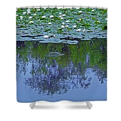 The Forest Beneath The Lilypads Shower Curtain by Jean Hall