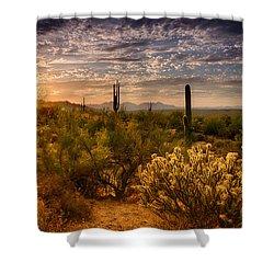 The Golden Southwest  Shower Curtain by Saija  Lehtonen