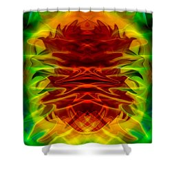 The Great And Powerful Oz Shower Curtain by Omaste Witkowski