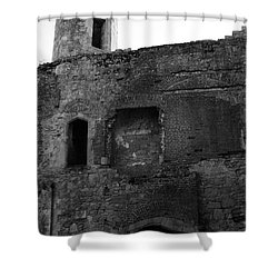 The Hearths Of Titchfield Abbey Shower Curtain by Terri Waters