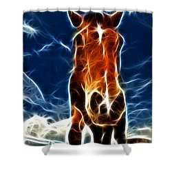 The Horse Shower Curtain by Paul Ward