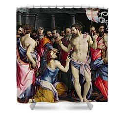The Incredulity Of Saint Thomas Shower Curtain by Francesco de Rossi Salviati Cecchino