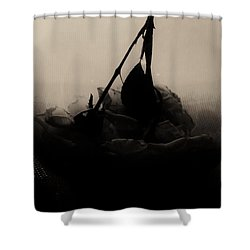 The Inverted Rose Shower Curtain by Jessica Shelton