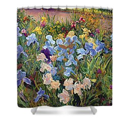 The Iris Bed Shower Curtain by Timothy Easton