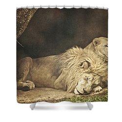 The Lion Sleeps Tonight Shower Curtain by Trish Tritz
