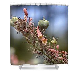 The Little Things In Life Shower Curtain by Douglas Barnard