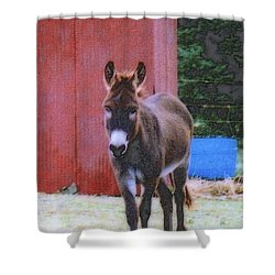 The Lonely Donkey Shower Curtain by Kay Novy