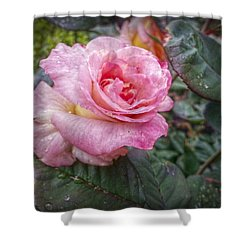 The Lonely One Shower Curtain by Linda Unger