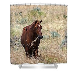 The Odd Couple Shower Curtain by Mike  Dawson
