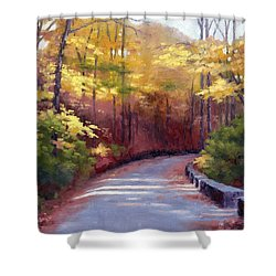 The Old Roadway In Autumn II Shower Curtain by Janet King