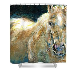 The Palomino Shower Curtain by Frances Marino