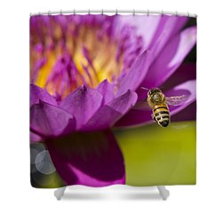 The Promise Of Pollen Shower Curtain by Priya Ghose
