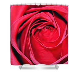 The Red Rose Blooming Shower Curtain by Karon Melillo DeVega