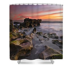 The Reef Shower Curtain by Debra and Dave Vanderlaan