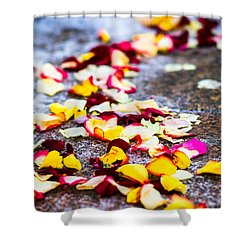 The Road - Featured 3 Shower Curtain by Alexander Senin