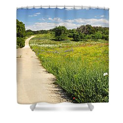 The Road Home Shower Curtain by Lynn Bauer