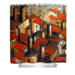 The Roofs Of Lyon Shower Curtain by Mona Edulesco