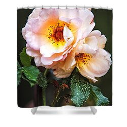 The Rose With Your Name. Park Of De Haar Castle Shower Curtain by Jenny Rainbow