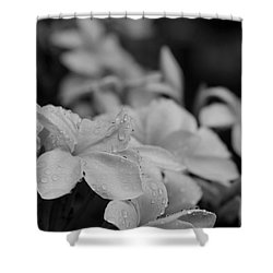 The Sacred Garden Shower Curtain by Sharon Mau