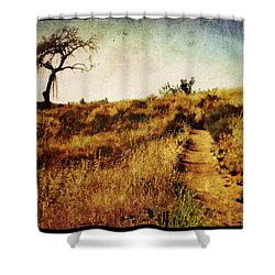 The Secret Pathway To Aspiration Shower Curtain by Brett Pfister