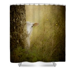 The Shy Lamb Shower Curtain by Loriental Photography
