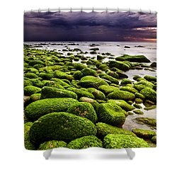 The Silence After The Storm Shower Curtain by Jorge Maia