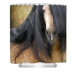 The Stallion Shower Curtain by Fran J Scott