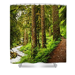 The Twisting Path Winding Through Paradise  Shower Curtain by Jeff  Swan