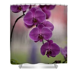 The Waiting Shower Curtain by Mike Reid