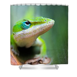 The Watching Eye Shower Curtain by Shelby  Young