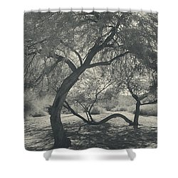 The Way We Move Together Shower Curtain by Laurie Search
