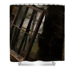The Window Shop Shower Curtain by Ron Jones