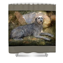 The Wolfhound  Shower Curtain by Fran J Scott