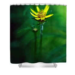 There's A Secret World Shower Curtain by Lois Bryan