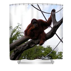 Thinking Of You Shower Curtain by Joseph Baril