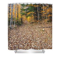 Thornton Gore Road - Thornton New Hampshire Shower Curtain by Erin Paul Donovan