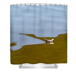 Three Men In A Boat - Featured 3 Shower Curtain by Alexander Senin