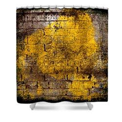 Three Moods Of Modern I Shower Curtain by Brett Pfister
