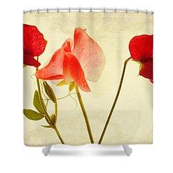 Three Peas No Pod Shower Curtain by John Edwards