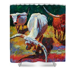 Three Texas Longhorns Shower Curtain by Debra Hurd