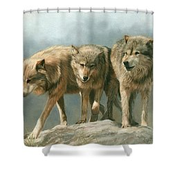 Three Wolves Shower Curtain by David Stribbling